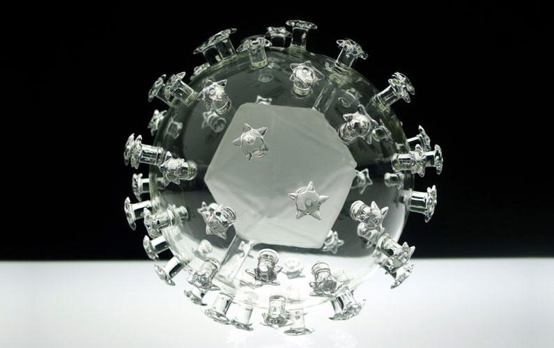 Luke Jerram. Human Papillomavirus (вирус папилломы человека) .